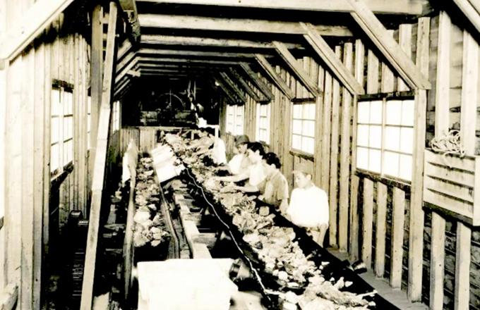 中瀬鉱山の歴史