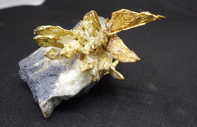 中瀬鉱山産出の自然金